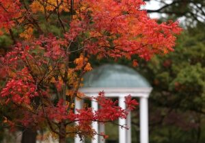 fall colored leaves by old well