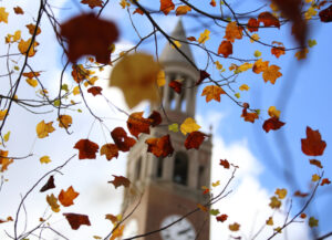 bell tower behind autumn colored leaves